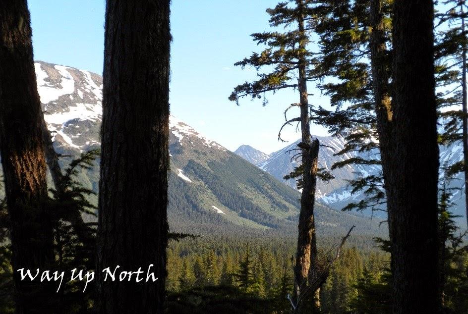 Way Up North