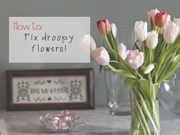How To: Fix Droopy Tulips!