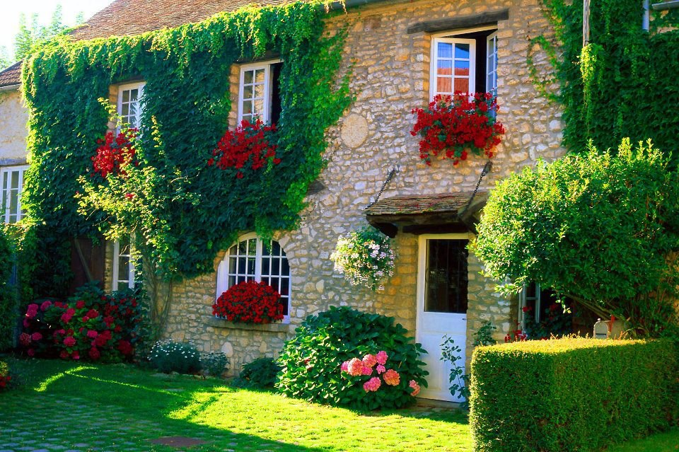 fotos jardins lindos : fotos jardins lindos:Espaço de Eva: Fachadas de casas con Flores.