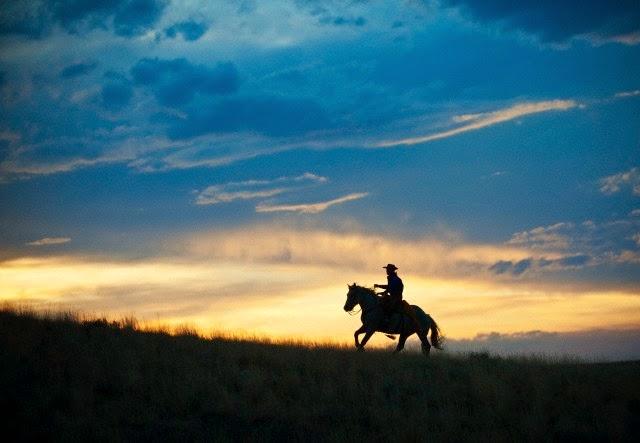 O cavalo sem sede - Célestin Freinet