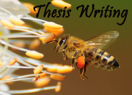 Thesis ghostwriter