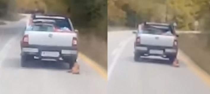 Αχαΐα: Αθώος ο οδηγός που έσερνε με το αγροτικό τον σκύλο του [βίντεο]