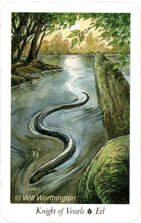 The Wildwood Tarot  Knight of Vessels Eel