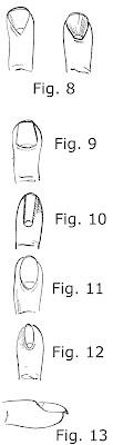 7 Forme e profili di unghia