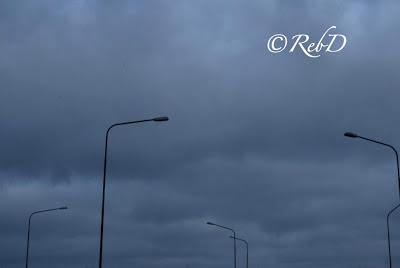 En grupp lyktstolpar mot bakgrund av grå himmel. foto: Reb Dutius
