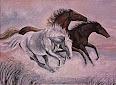 Foto Visión//Fotos sociales, porta retratos, Albunes