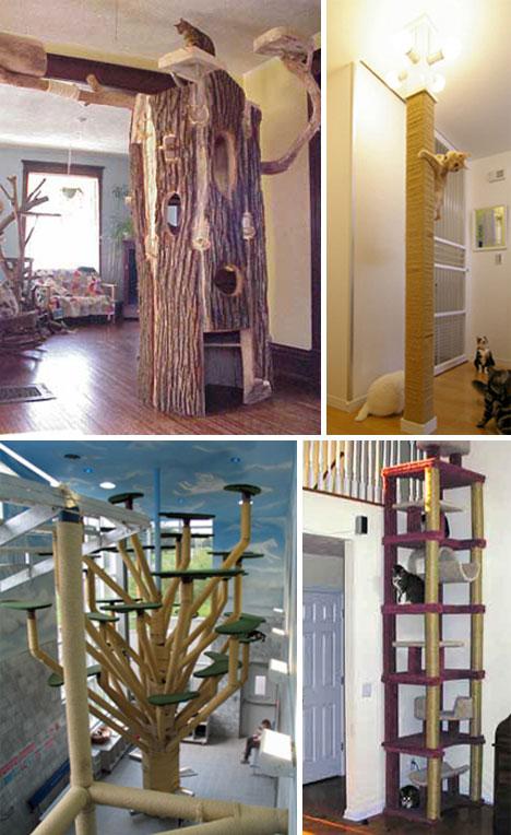 25 Casas y hábitats asombrosos para tu mascota