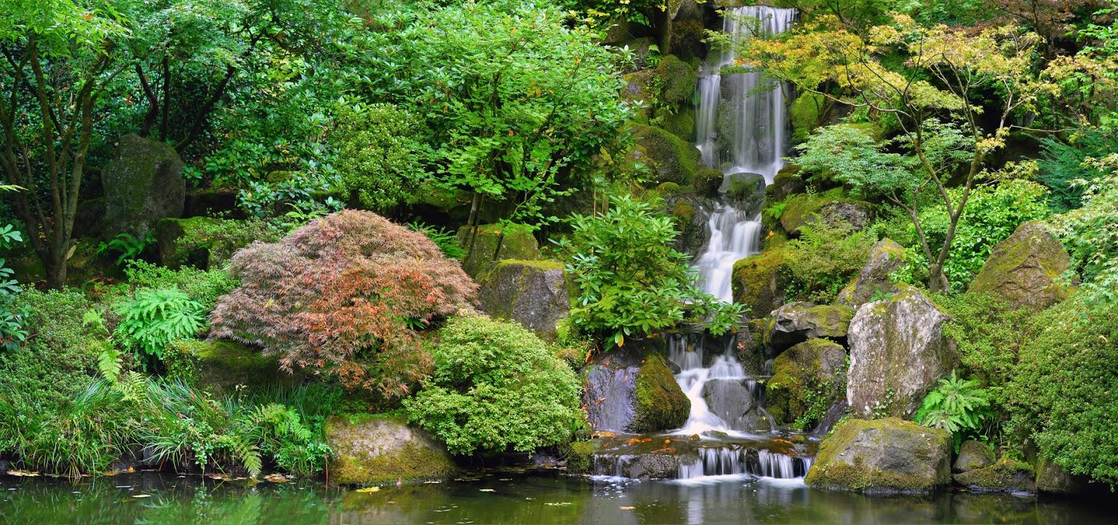 Banco de im genes impresionante cascada de agua clara for Cascadas jardin zen