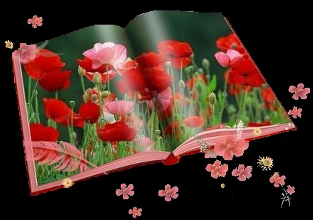 rosas no jardim poema : rosas no jardim poema:FLORES NO JARDIM: Livro de poema