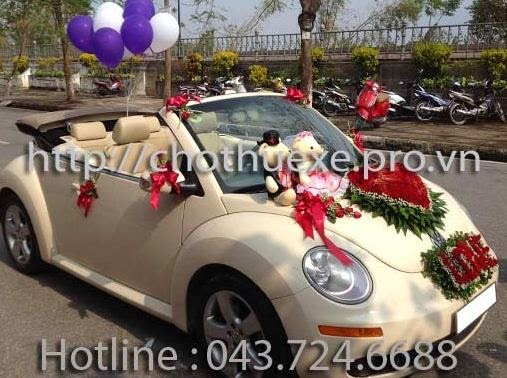 Cho thuê xe cưới Hoàng Huy - Đông Á - Đức Vinh Trans