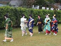 上賀茂神社に上七軒の芸舞妓さんが入って来た。