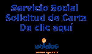 Cartas Servicio Social