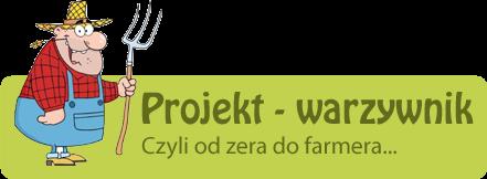 Projekt - warzywnik