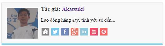 Khung thông tin tác giả style wordpress cho blogspot