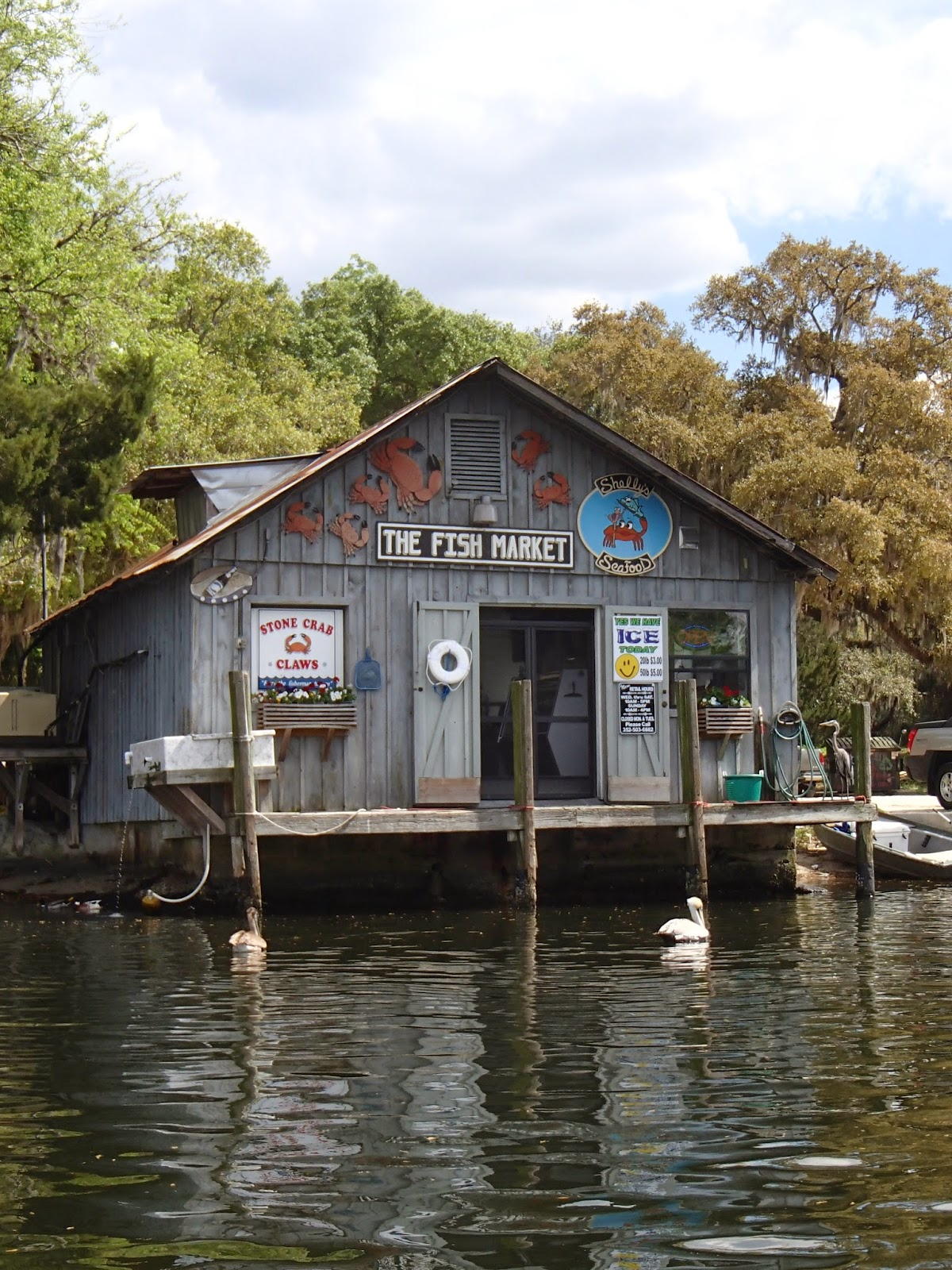 Homosassa Fish Market