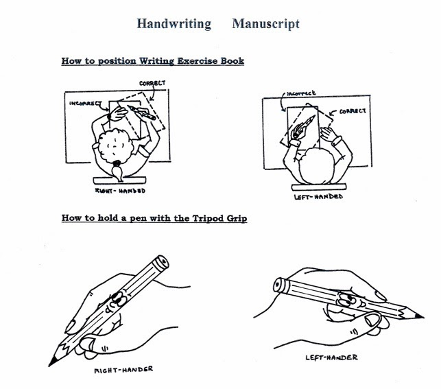Handwriting Grips