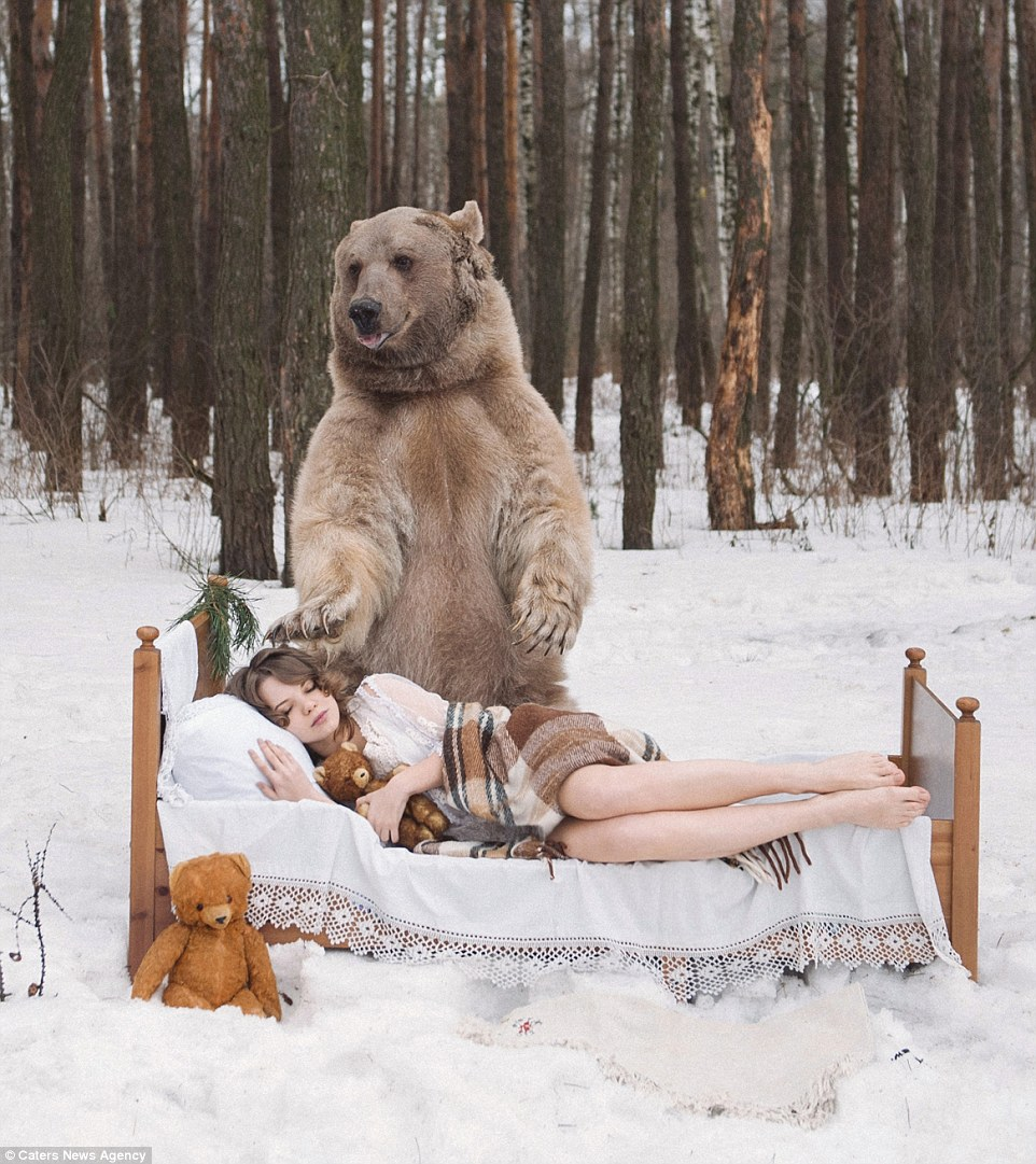 Медведь и заяц секс