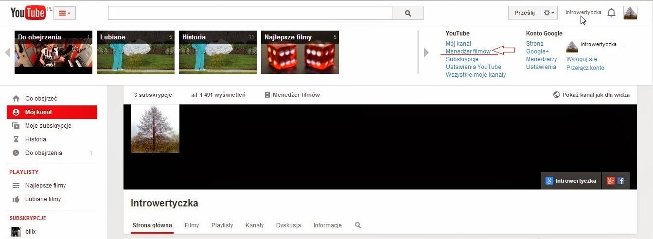 Youtube - Menedżer filmów