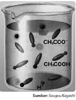 Model pelarutan asam asetat