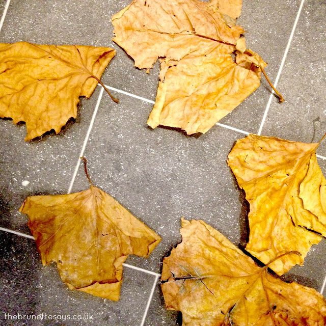 autumn activities, activities for 1 year olds, leaf crunching