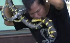 Man Bites Deadly Snake