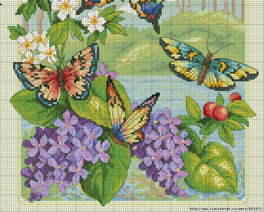 Hobby lavori femminili ricamo uncinetto maglia for Farfalline punto croce