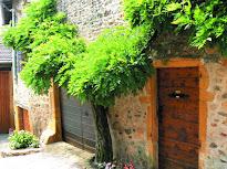 Architecture et mode de vie des fermes et maisons de vignerons dans le Beaujolais