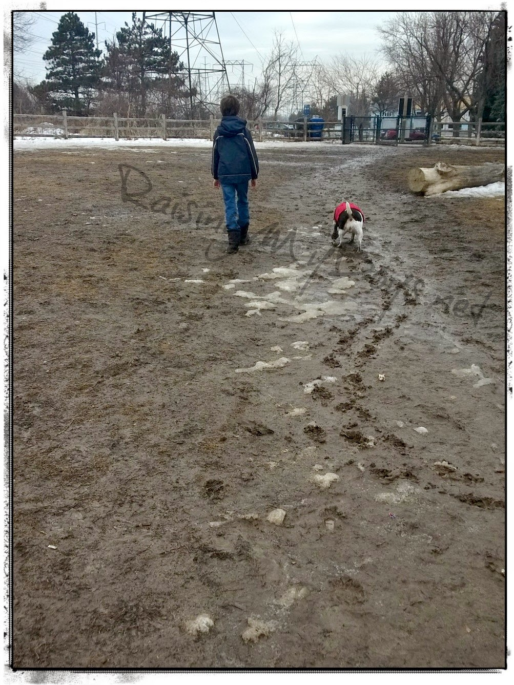 boy and dog walking in muddy field