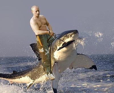 Vladimir Putin and the Left Shark