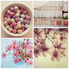 Istanti di Pasqua