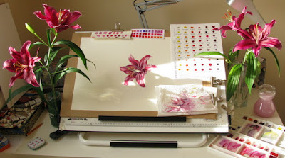 Artist desk with magenta lily flowers and colour studies Shevaun Doherty