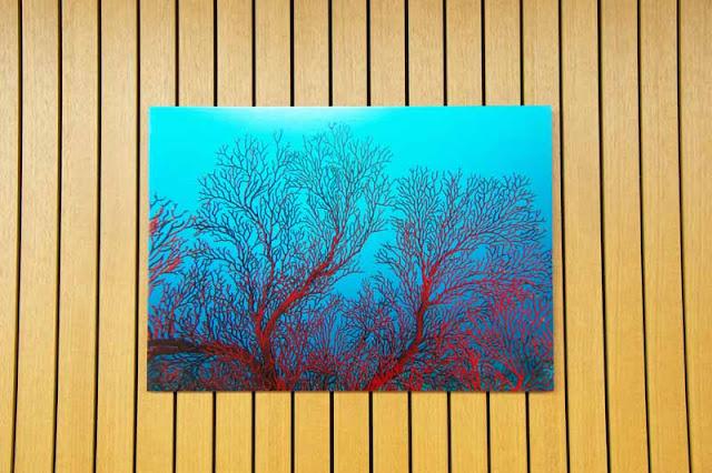 blue ocean, red coral