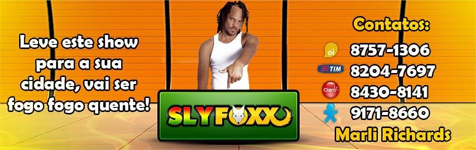 BAIXE AS MÚSICAS DE SLY FOXX