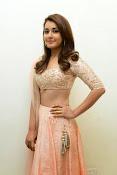 Rashi Khanna glamorous photos-thumbnail-7