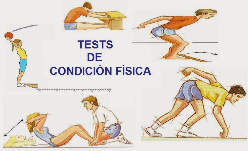 Aptitud Fisica Educacion Fisica Test de Aptitud Física