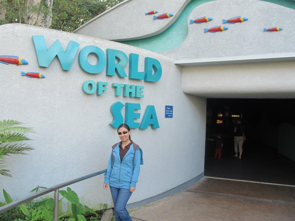 SeaWorld San Diego World of the Sea