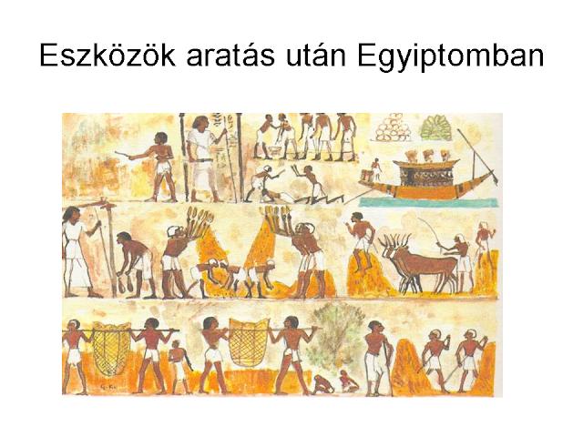 eszközök aratás után Egyiptomban