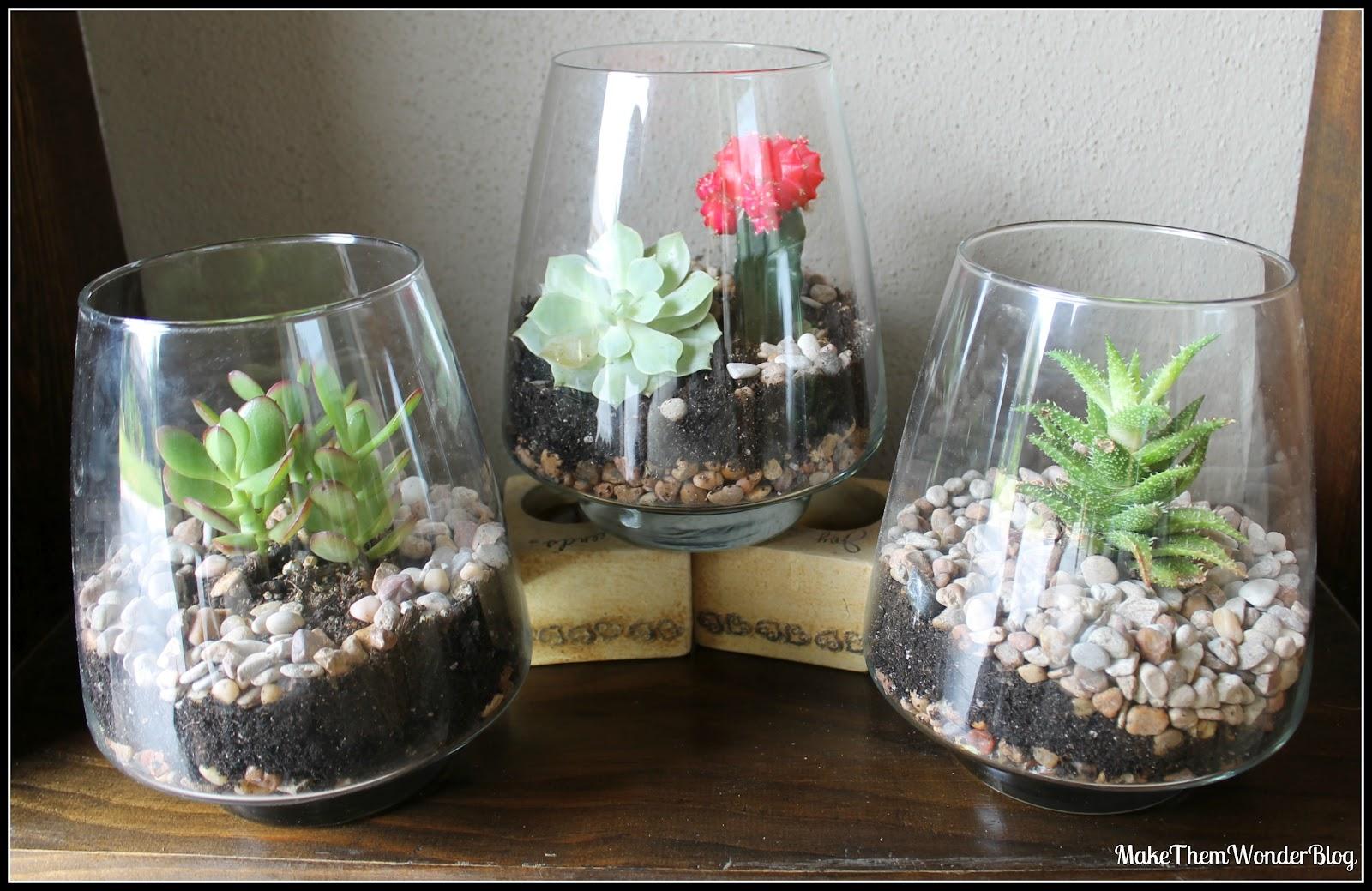 make them wonder i still heart succulent terrariums. Black Bedroom Furniture Sets. Home Design Ideas