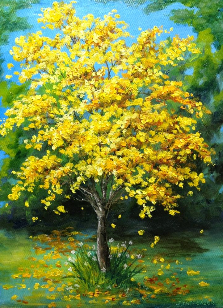 Daily Painters Of Florida Glorious Tabebuia A Bright Yellow Blooming Tree By Judy Batterson