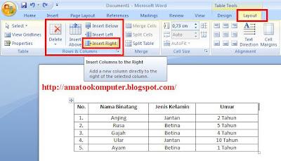 Cara Menyisipkan Kolom atau Baris pada Tabel di Microsoft Word 2007