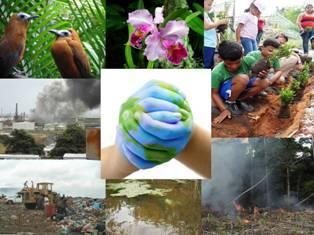 Foto del Día Mundial del Ambiente - Venezuela