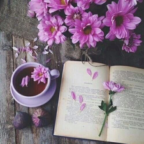 Un libro te permite vivir una aventura sin moverte de casa.