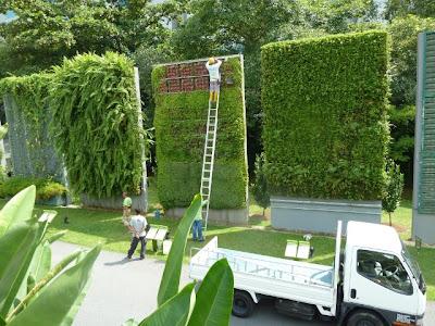 construccin de jardines verticales muros verdes greenwalls foto