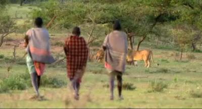 Hebatnya Suku Masaai Yang Ditakuti Para Singa