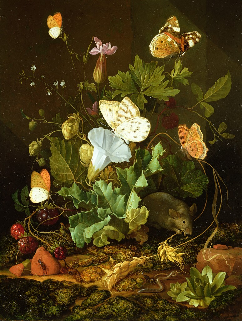 still life old dutch master flower pieces
