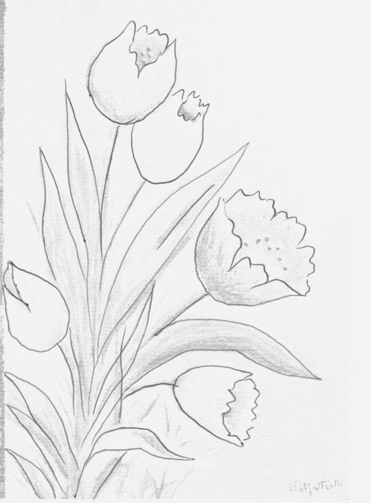 Para ampliar os riscos e desenhos de tulipas, imprimir ou salvar