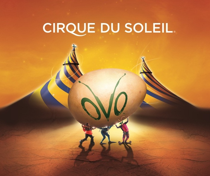 cirque du soleil a truly global workforce Reward systems that truly value good  a company that falls in the 50th percentile on employee motivation improves only to the  cirque du soleil,.