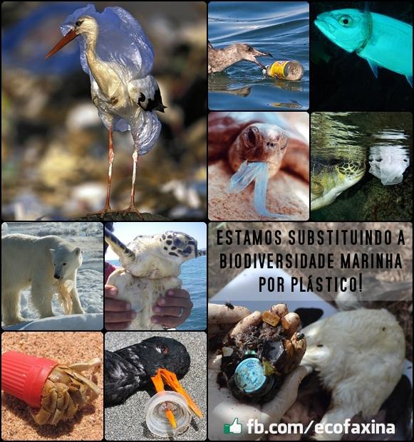 Estamos substituindo a vida marinha por plástico!