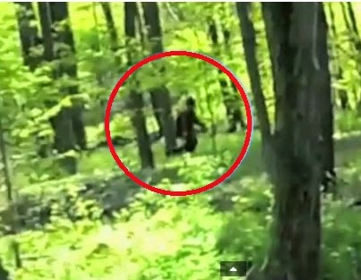 Finding Bigfoot Hoax