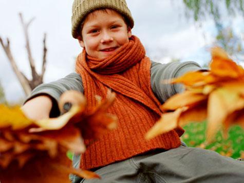 Autumn Activities7